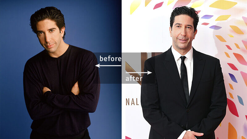David Schwimmer Then and Now